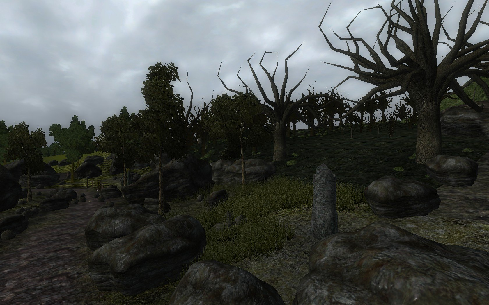 Halfway Inn Forest